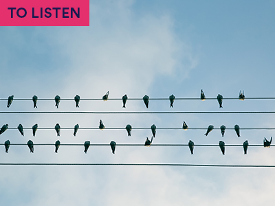 birds on electric wire against blue sky. Keyword in the corner TO LISTEN