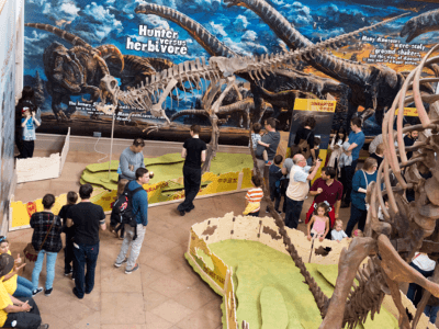 Dinosaurs of China exhibition at Wollaton Hall and Lakeside Arts