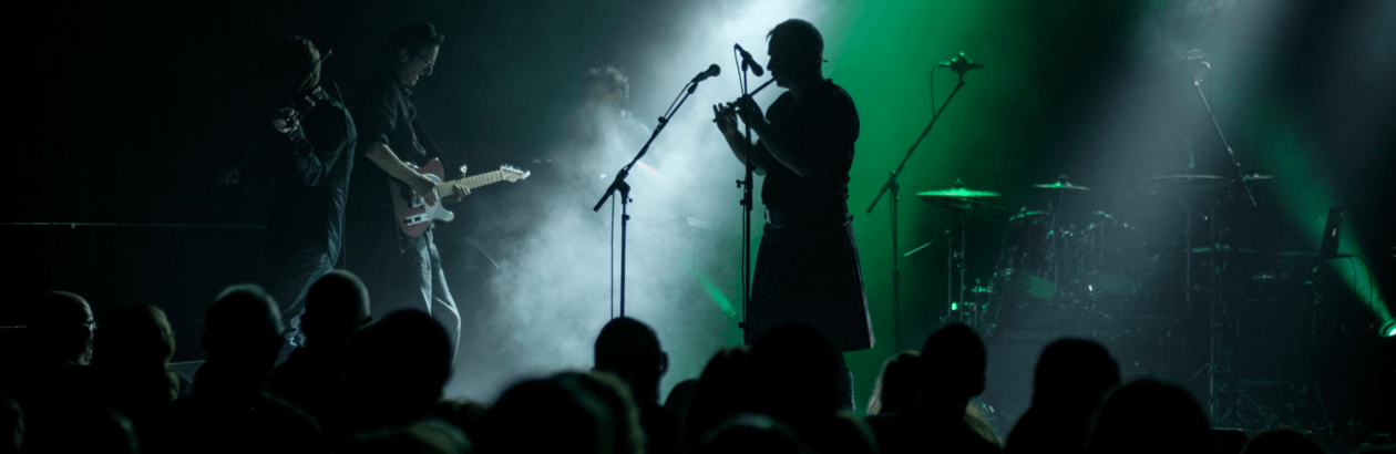 Peatbog Faeries performing at Lakeside Arts